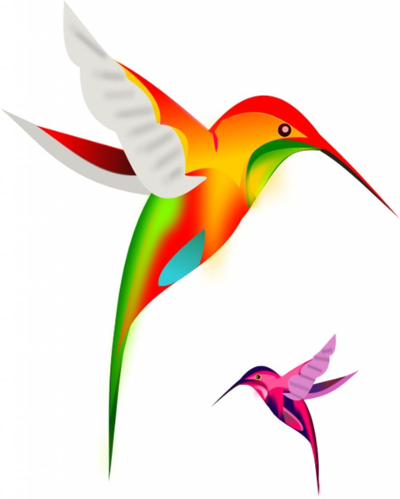Hummingbird stillness clipart free clipart images.