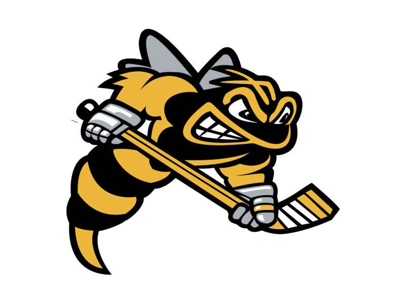 Sarnia Sting Logo PNG Transparent & SVG Vector.
