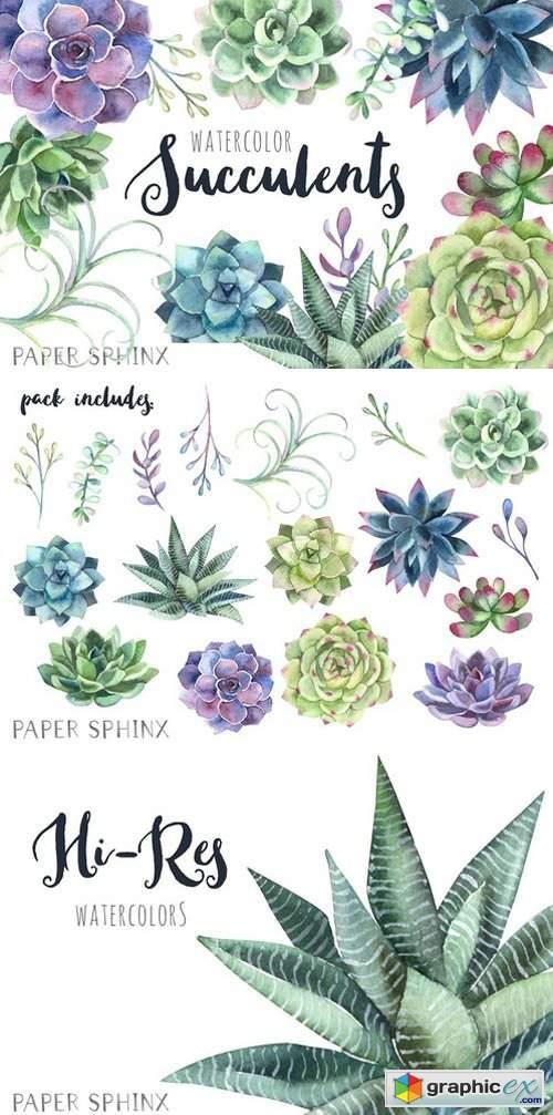 Watercolor Succulents Clipart » Free Download Vector Stock.
