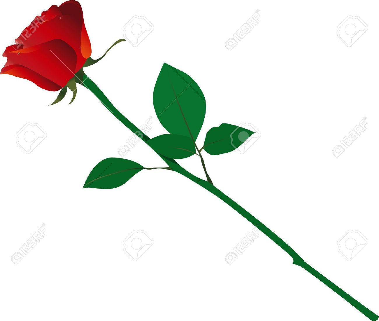 Single rose clip art.
