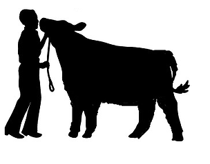 Stock Show Clipart.