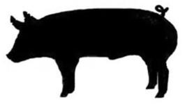 Junior Livestock Show Clipart.