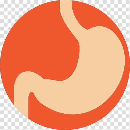 Computer Icons Stomach Gastric bypass surgery Digestion.
