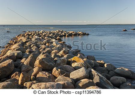 Pictures of Cobble stone mole in sea csp11394786.