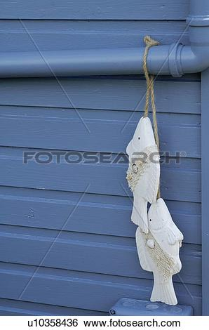Stock Images of Two fish figurines hanging at eaves gutter.