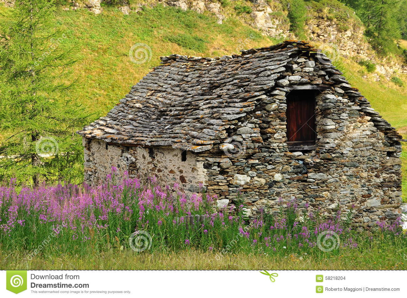 Old Stone House And Meadow In The Italian Alps Stock Photo.