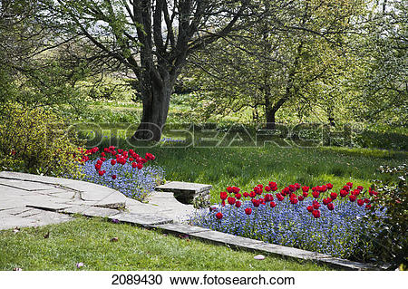Stock Photography of A stone path with a meadow and blossoming.