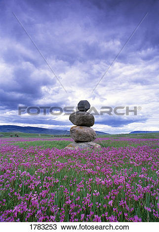 Stock Photo of Stone marker in a field of shooting star.