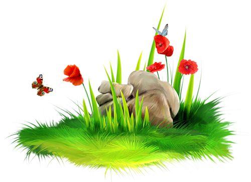 1000+ images about หญ้า ดอกไม้ on Pinterest.