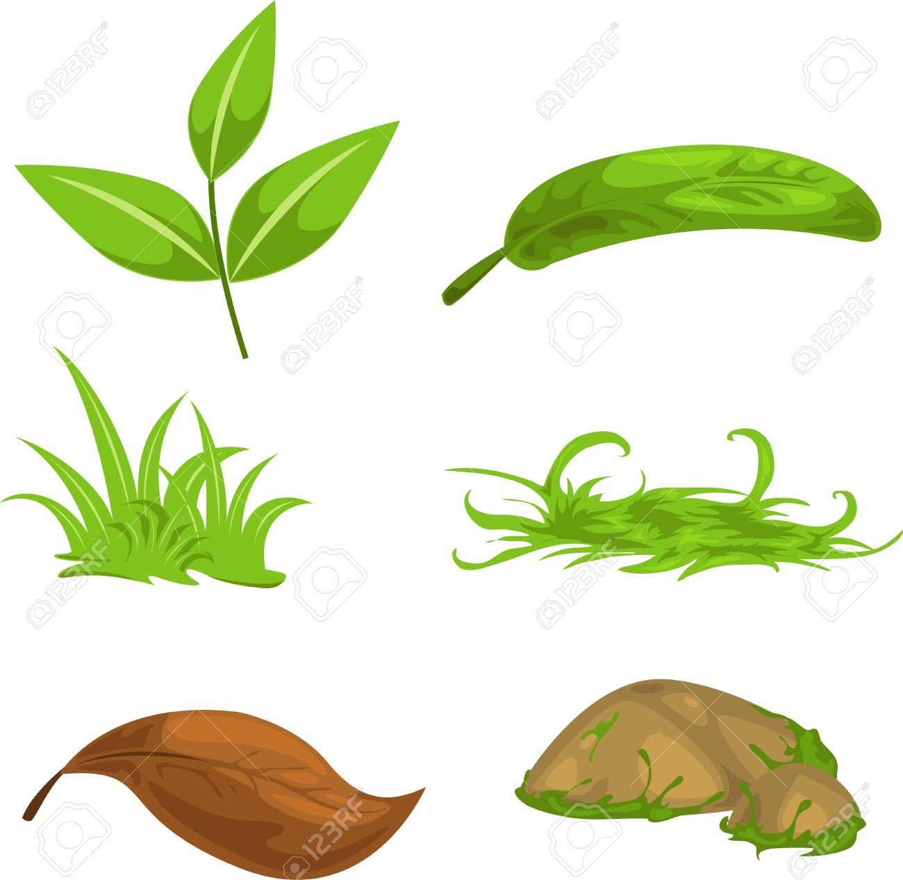 Green Tea Leaves And Stone And Grass Royalty Free Cliparts.