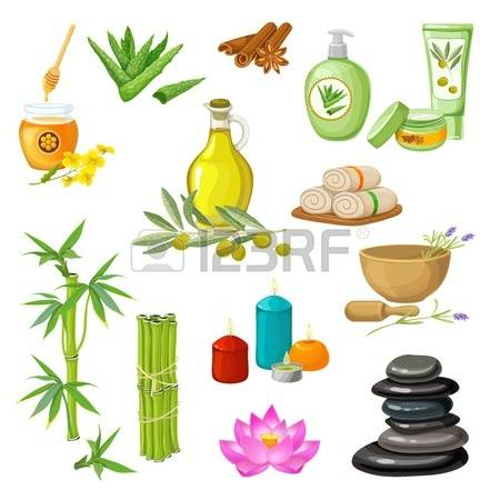 617 Pebble Plant Stock Vector Illustration And Royalty Free Pebble.
