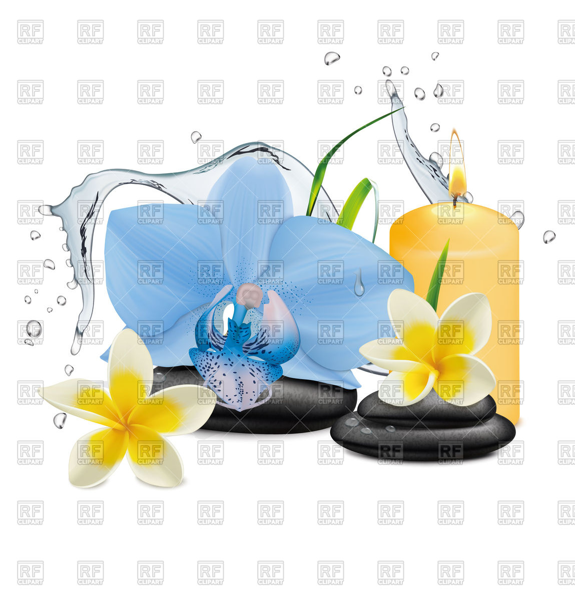 Orchid flower, water splash and zen stone.