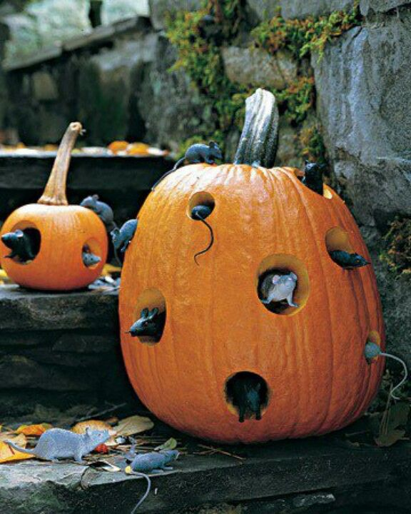 17 Best images about halloween on Pinterest.