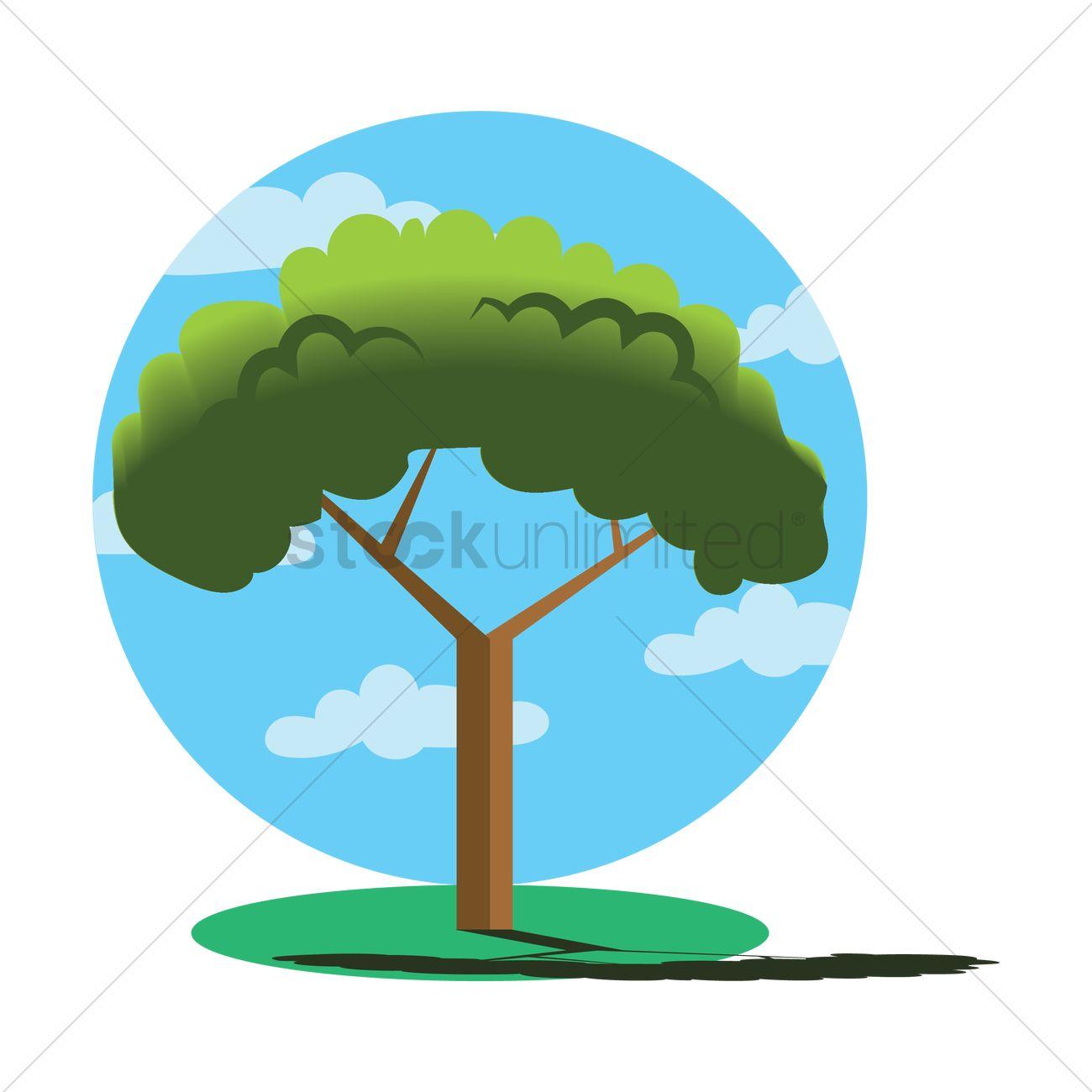 Mediterranean stone pine tree Vector Image.