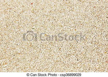 Stock Photo of rough texture surface of exposed aggregate finish.