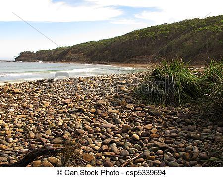 Stock Photo of Wild shore in australia with stony beach, plants.