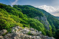 The Appalachian Trail, On Little Stony Man Cliffs In Shenandoah.