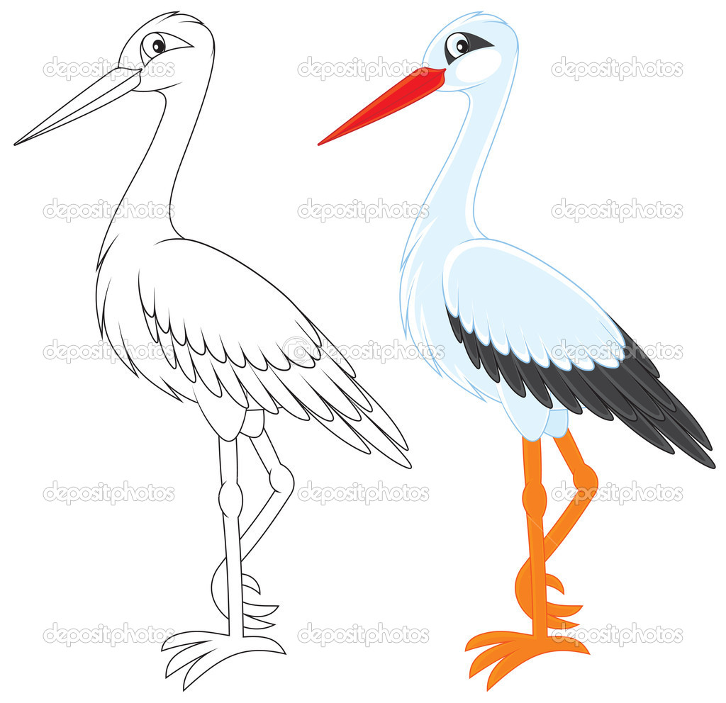 Storch Clipart Clipground