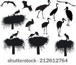 Stork Nest Free Vector Art.