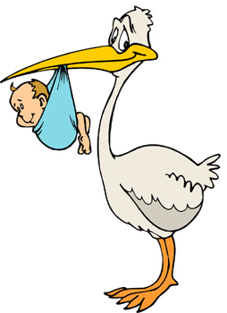 Stork Clip Art.