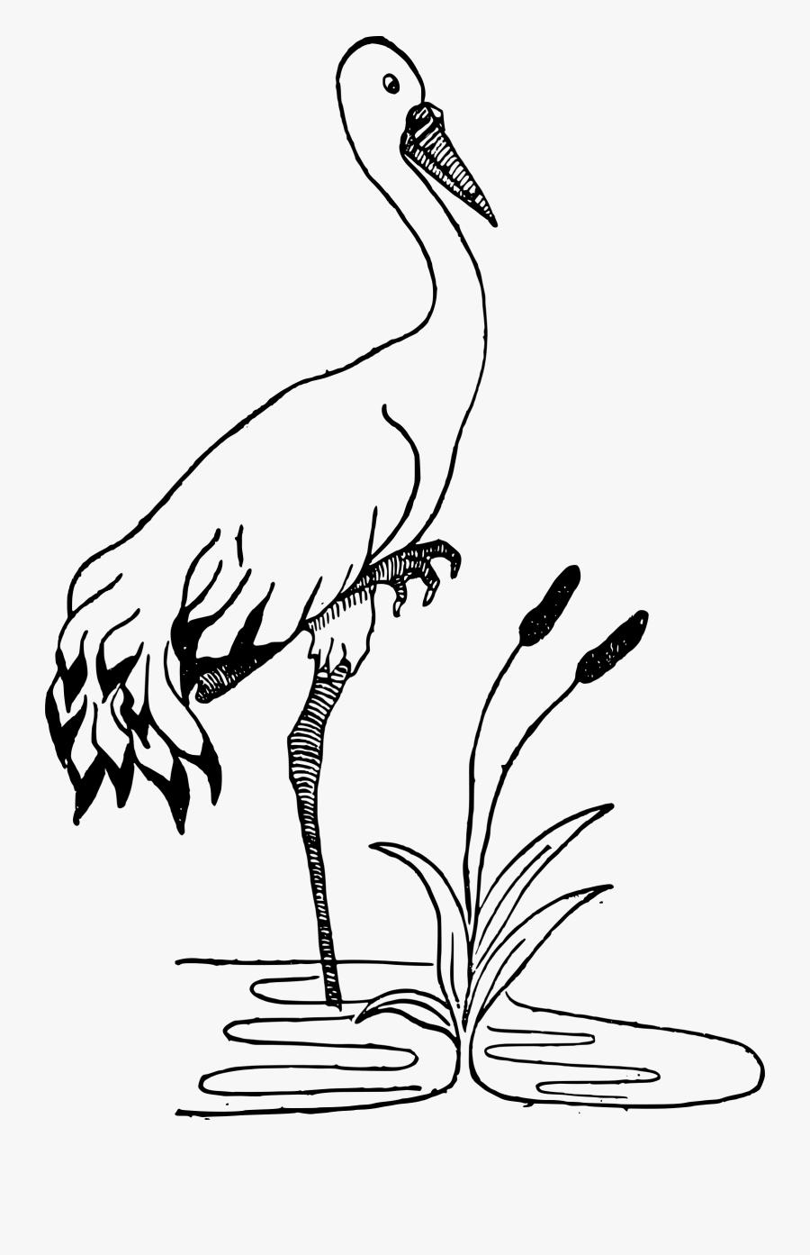 Free Crane In A Pond.