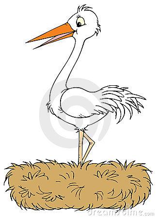 Stork Nest Stock Illustrations.