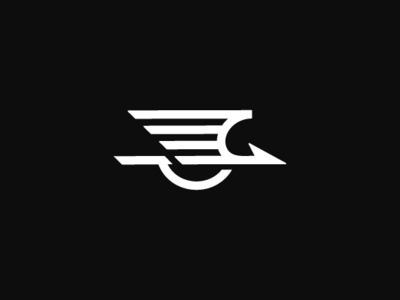 Flying Stork Logo by Dovs on Dribbble.