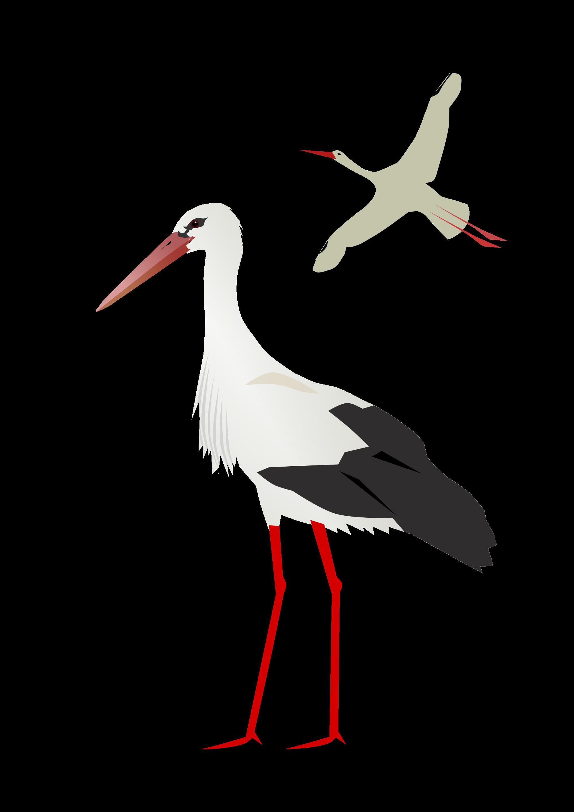 Stork PNG images free download.