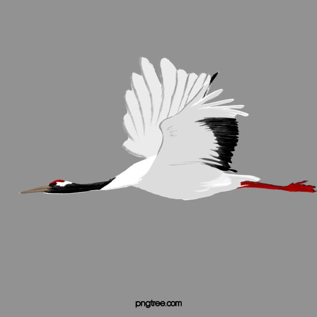 Stork Png, Vector, PSD, and Clipart With Transparent.