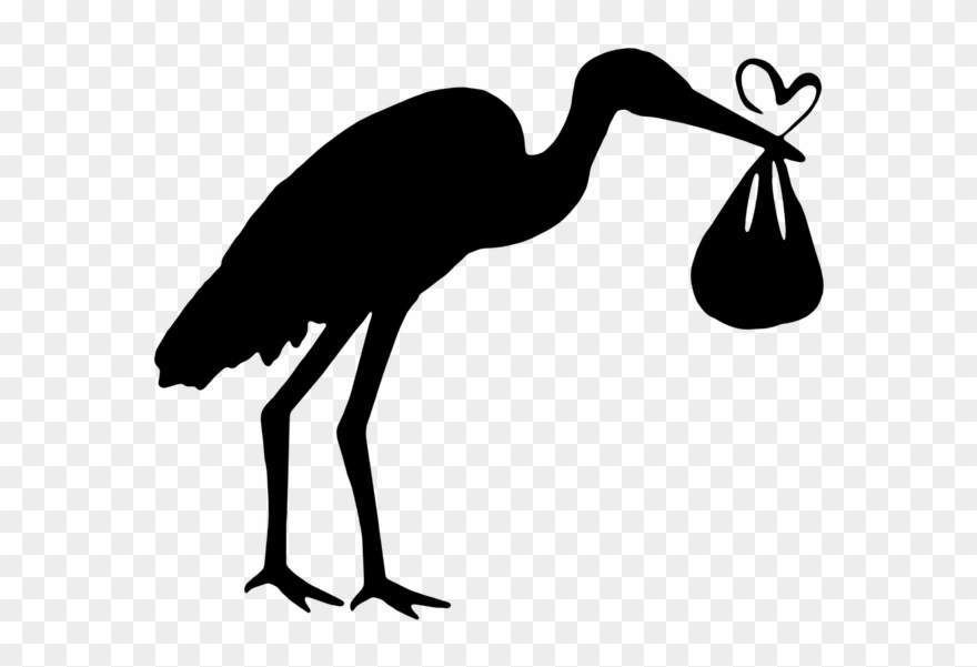 Bird, Stork, The Silhouette, New, Graphics, Vector,.