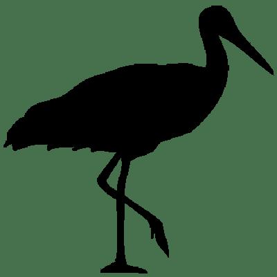 Stork Clipart transparent PNG.