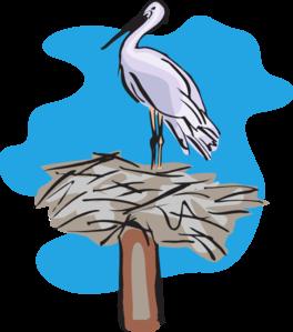 Bird Standing On Nest Clip Art at Clker.com.