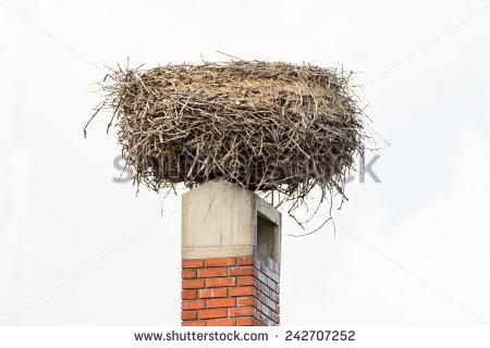 Stork Nest On Chimney Stock Photo 242707252 : Shutterstock.
