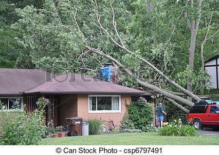 Stock Photography of Storm damage.