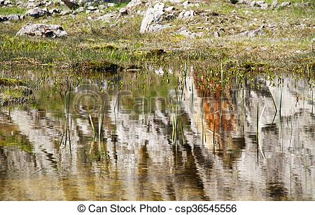 Stock Images of small lake in the former quarry Kamenarka near.