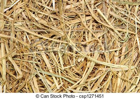 Stock Photography of Straw.