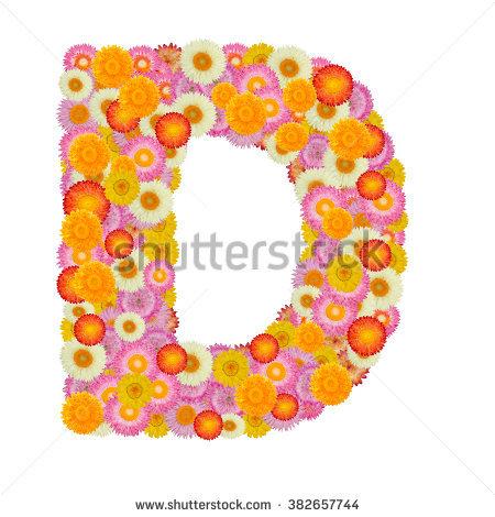Letter C Alphabet Straw Flower Isolated Stock Photo 382657789.