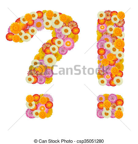 Straw flowers clipart #11