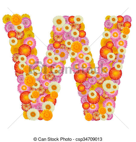 Clipart of Letter W alphabet with straw flower isolated on white.