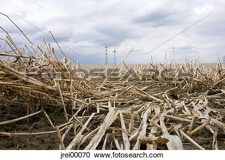Stock Photography of Earth, harvest, harvested, field, straw.