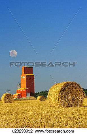 Stock Photo of wheat straw rolls and grain elevator, Carey.