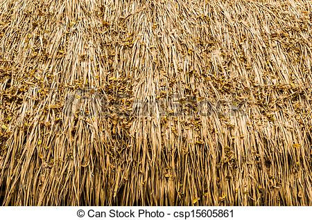Thatched roof Images and Stock Photos. 4,438 Thatched roof.