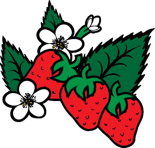 Strawberries clip art Free Vector / 4Vector.