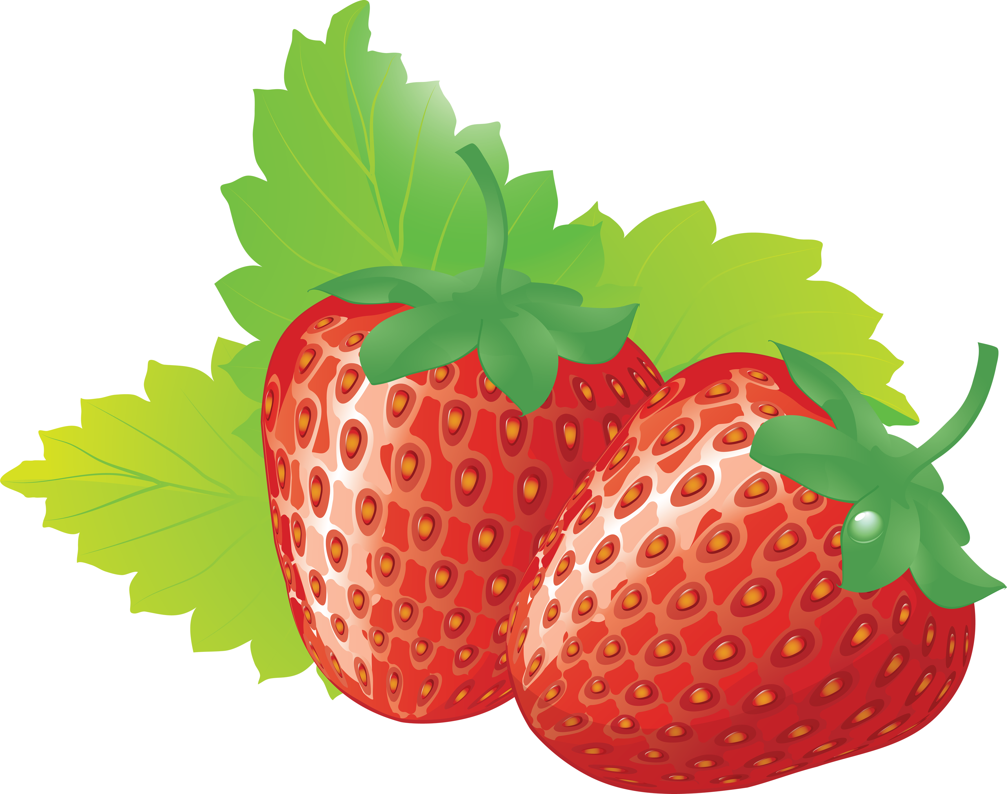 Clip Art. Strawberry Clipart. Stonetire Free Clip Art Images.