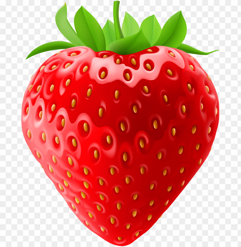 strawberry fruit clipart.