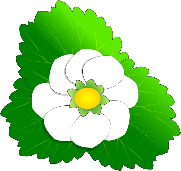 Strawberry Flower clip art Free vector in Open office drawing svg.