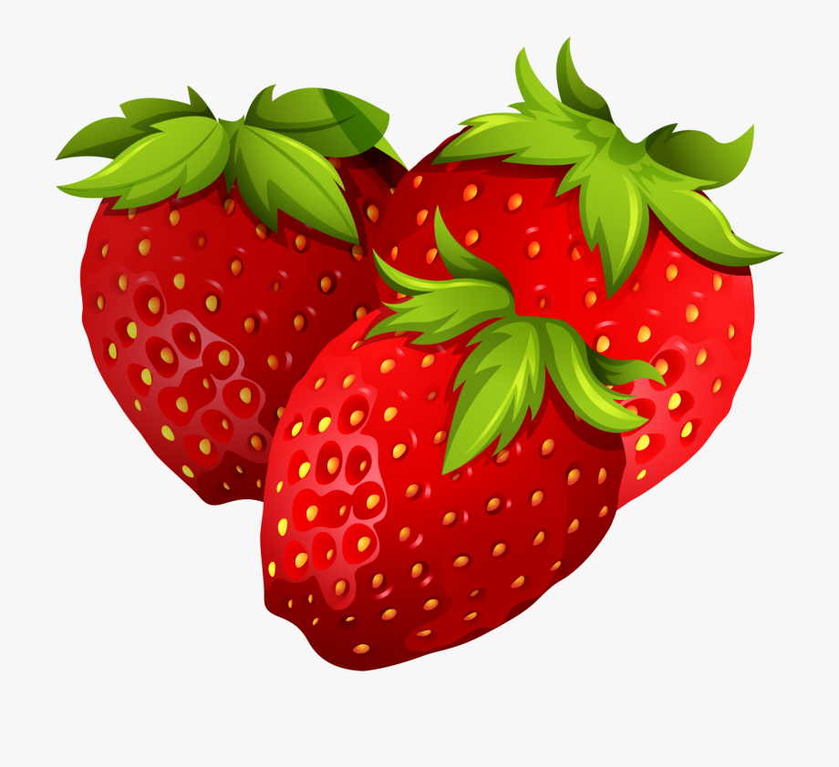 Stem Drawing Strawberry.
