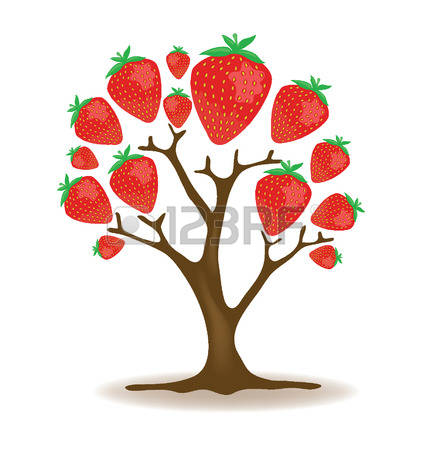 1,111 Strawberry Tree Stock Illustrations, Cliparts And Royalty.