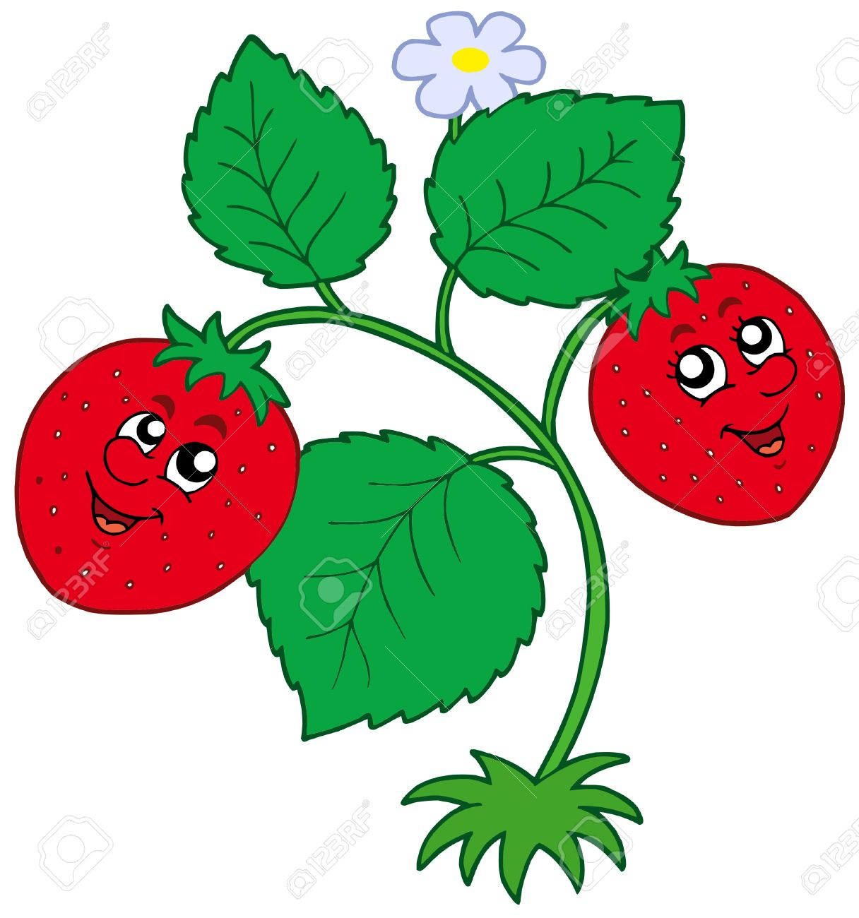 Cute Strawberry On White Background.