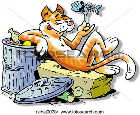 Stock Image of cat, feline, alley cat, stray cat, garbage, garbage.